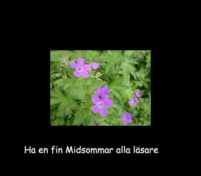 midsommarblomster2.jpg